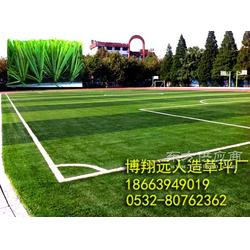 施工各类塑胶运动场地,人造草坪运动场地图片