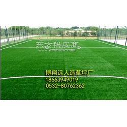 草皮验收标准-足球场仿真草坪图片