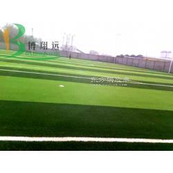 庭诺人工草坪图片