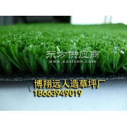 人造仿真草坪 人工草皮草坪地毯 足球场假草坪马尼拉塑料草坪图片