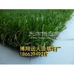BEST-GRASSDS503-2C)菱形单丝人造草坪图片