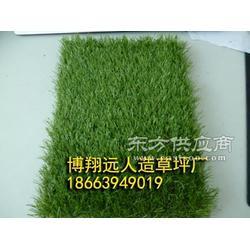 足球场人造草坪(BMJS50)图片