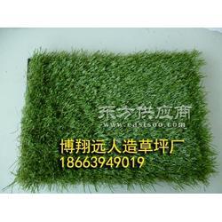 人造草皮尺寸-高尔夫球场草坪品种图片