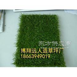 厂家直销价足球场地人造草坪图片
