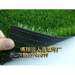 墙面装饰塑料草坪的图片