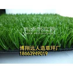 花园人造草坪-运动人工草坪生产厂家图片