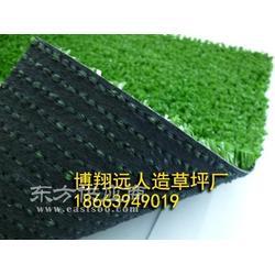 平板双色人造草坪 (BBMTY-P-50)图片
