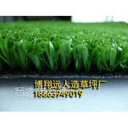 厂家直销人造草坪铺装施工图片