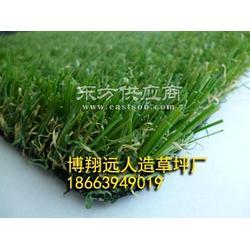 人造草坪直丝加曲丝4色景观人造草坪学校用草图片