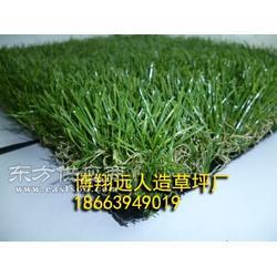 绿化装饰人造草坪厂家图片