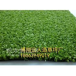 超高密度草坪厂家图片