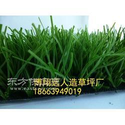 绿化人造草皮厂家图片