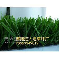 幼儿园绿化地毯草坪厂家图片