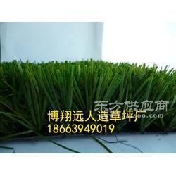 工程绿化人造假草皮草坪厂家图片
