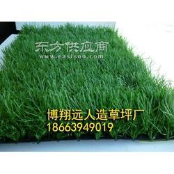 楼顶阳台人工草皮地毯厂家图片