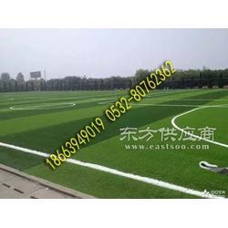 厂家直销休闲运动草坪 足球场人造草坪图片