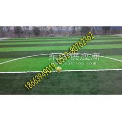 人工草坪球场图片