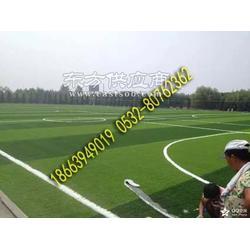 标准的人造足球场草坪多少钱图片