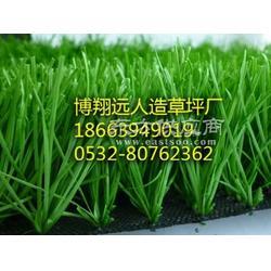 50mm高网丝人造草坪足球场专用图片