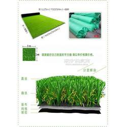 热卖的、学校人造草坪图片