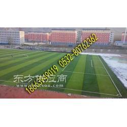 厂家人造草坪-门球场图片