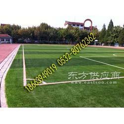人造草坪铺设-天然草皮足球场图片