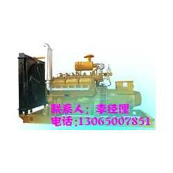 100KW发电机秸秆气发电机图片