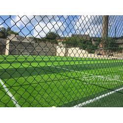 宾馆人工草皮/休闲娱乐人造草坪场地铺装/绿色环保图片