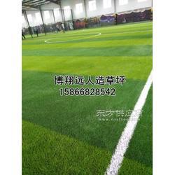 人造草坪足球场建设标准图片