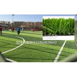 供应50mm足球场草皮使用图片