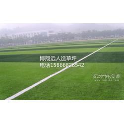 供应50mm五人制足球场人工草皮钢板图片