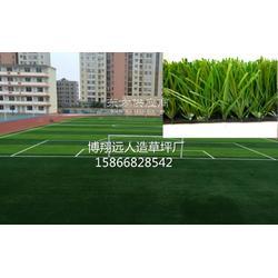 足球场草皮设计图片