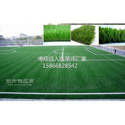 供应50mm足球场草坪安装图片