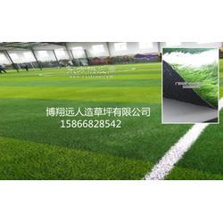 十一人制塑胶人造草坪选购图片
