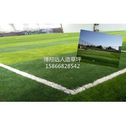 足球场人造草坪展销图片