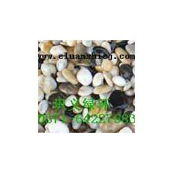 园林卵石图片