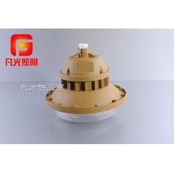 SBF6103sbd6103免维护节能防水防尘防腐灯图片