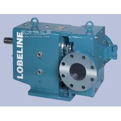 旋转活塞泵丶凸轮转子泵丶污水泵06图片