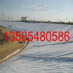 工地施工材料0.75mm土工膜垃圾场-北辰土工膜垃图片