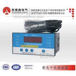 干式变压器温度控制器LD-B10-10D 干变温控器图片