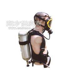 RHZKF6.8升空气呼吸器图片