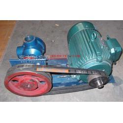 LC高粘度罗茨泵糖浆泵重油泵图片