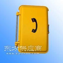 矿内防水防潮电话机隧道防水防潮电话机图片