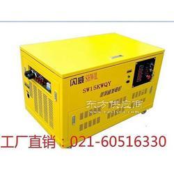 15KW汽油发电机 广告车专用汽油发电机图片