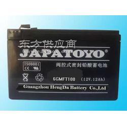 东洋蓄电池总代理_东洋蓄电池_东洋蓄电池图片