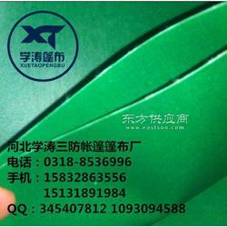 绿色pvc300-650克/平米方涂塑布图片