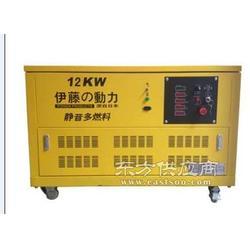 12千瓦超静音汽油发电机YT12RGF图片