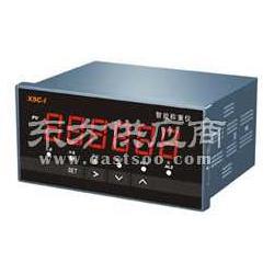 XSC-I称重控制仪图片