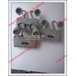 BAJ52-127防爆应急灯图片