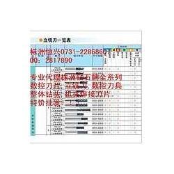 株洲钻石 直柄平头立铣刀 GM-2E-D9.0 GM-4E-D9.0图片